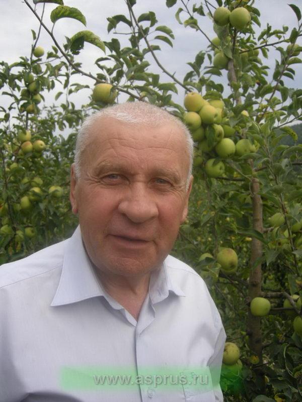 Назаренко Василий Александрович, генеральный директор компании ЗАО «Новомихайловское» (Краснодарский край)