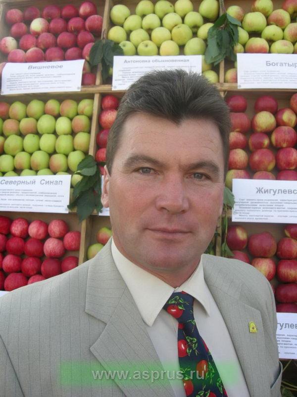 Воробьев Сергей Васильевич, технический специалист по спецкультурам ООО «Сингента» Регион Центр
