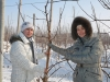 Баранова Юлия Юрьевна, главный агроном ООО «Снежеток» и Кожина Алина Игоревна, специалист Ассоциации садоводов-питомниководов (АСП-РУС)