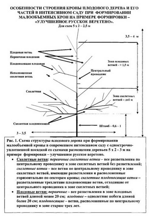 """Схема """"Улучшенное русское веретено"""""""