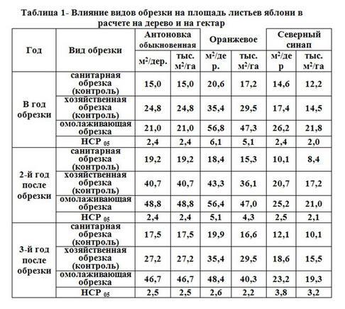 Таблица 1 - Влияние видов обрезки на площ листьев яблони