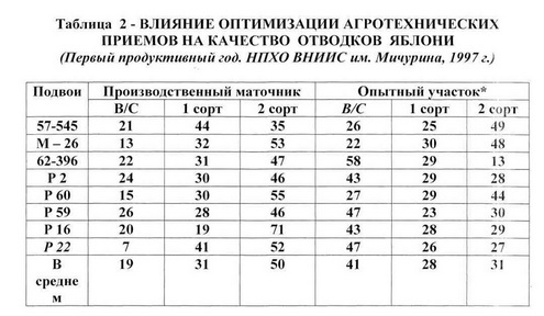 Таблица 2 - Продук. интенсив. маточника клон.подв.