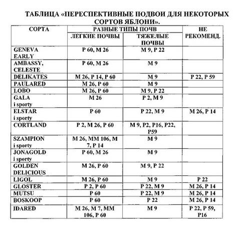 Таблица 2 Переспективные подвои для некоторых сортов яблони
