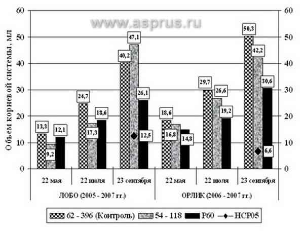 Рисунок 2 – Увеличение объема корневой системы саженцев яблони