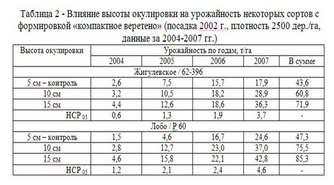 """Таблица 2 - Влияние высоты акулировки на урожайность при форм """"компактное вер"""""""