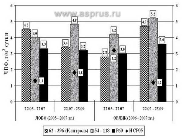Рисунок 3 – Изменения чистой продуктивности фотосинтеза листьев
