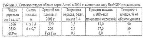 Таблица - Качество плодов сорта Антей в опытном саду БелНИИ
