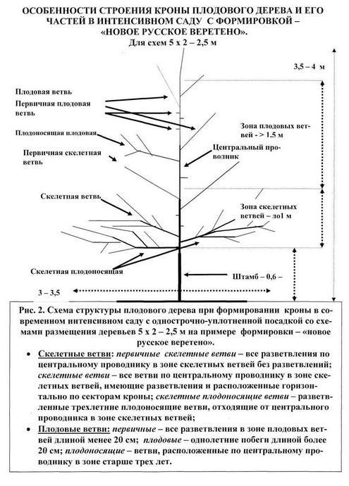 """Схема 2 """"Новое русское веретено"""""""