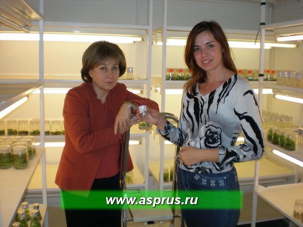 Заведующая лабораторией биотехнологии и стандартизации доктор Маргольжата Корбин