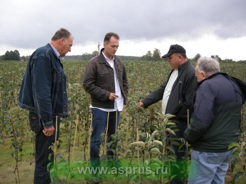 Посещение председателем АСП-РУС Муханиным И.В. польского питомника плодовых деревьев